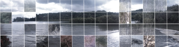 estuary-grid5